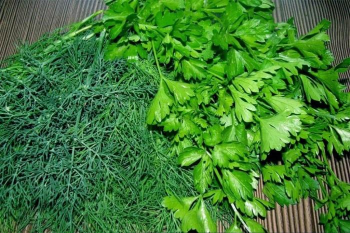 Зелень можно убирать по 3-4 раза. ¦Фото: teplica-one.ru.