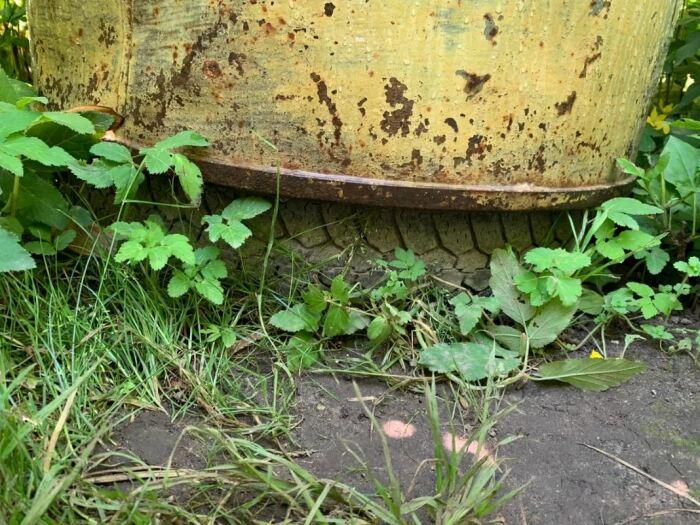 Некоторые ставят бочку на колесо. ¦Фото: ya.ru.