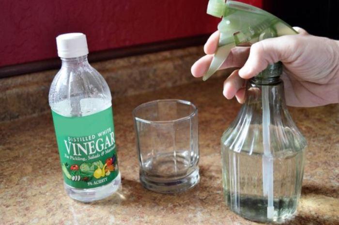 Уксусный раствор и распылитель. |Фото: softwaresolus.com.