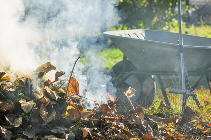 Нельзя жечь мусор просто где захочется. |Фото: teplica-exp.ru.