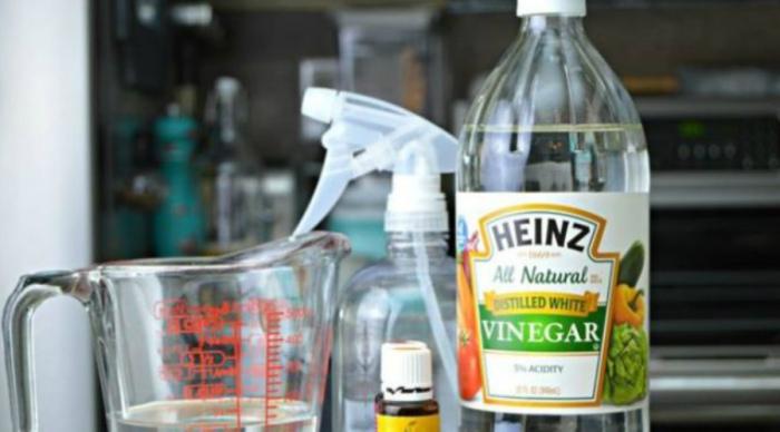 Нужны белый уксус и вода.  Фото: dnpmag.com.