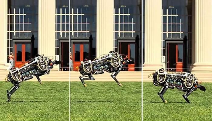 Робот-гепард.