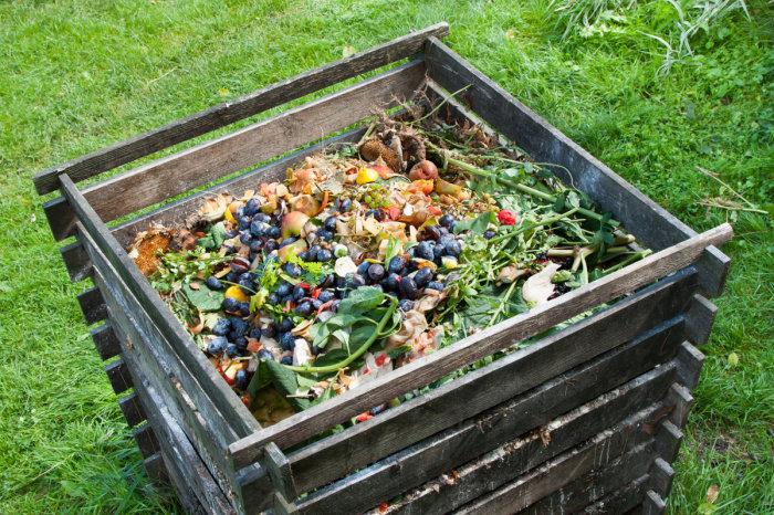 Всегда можно сделать компост. |Фото: austinmonitor.com.