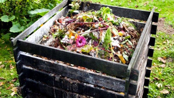 Нельзя бросать в компост все, что захочешь. |Фото: whygoodnature.com.