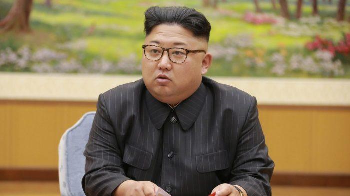 Ким тоже поддерживает памперсы и сбор метана. ¦Фото: yandex.ru.