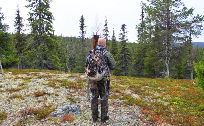 Охотники используют этот костер по сей день.  Фото: discoveringfinland.com.