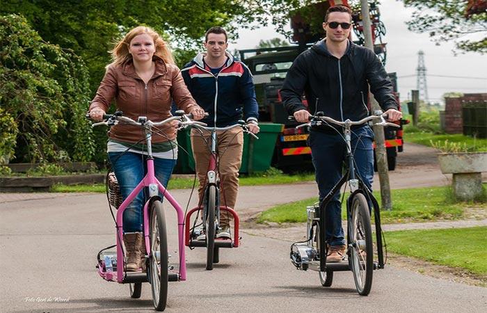 Электрический пешеходный велосипед.