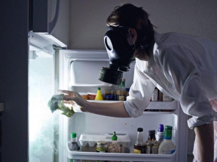 Причина не в холодильнике. |Фото: erudit.tk.