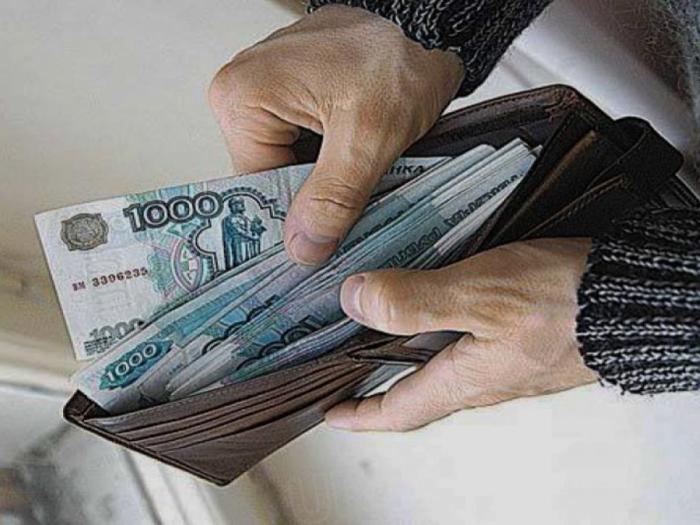 Деньги любят счет. | Фото: izvestia29.ru.