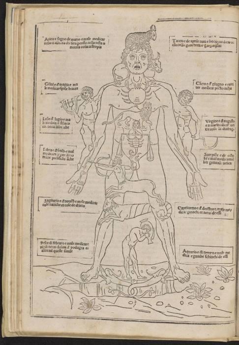 Астрология в медицине.