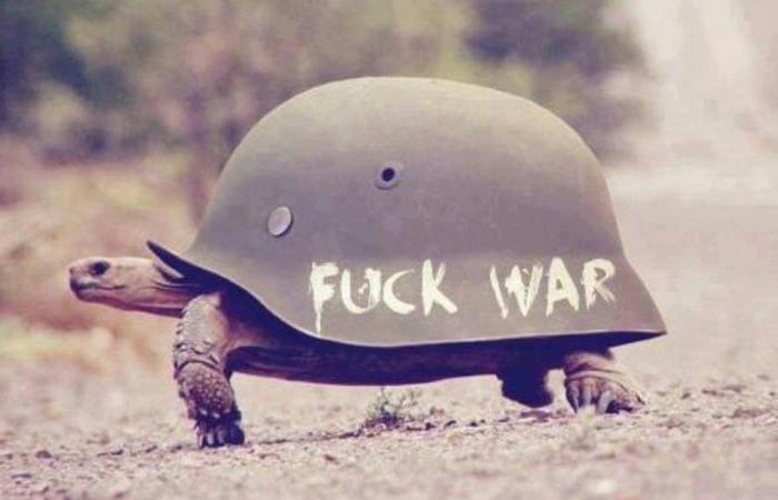 Армии мира.