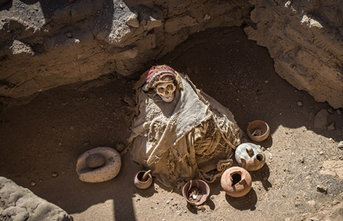 Мумия 11-го века.
