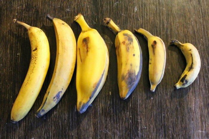 ГМО бананы помечаются отдельным кодом. ¦Фото: fitohome.ru.