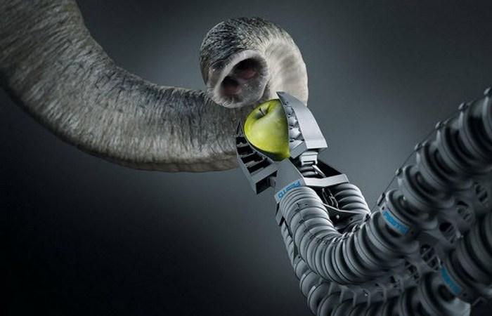Роботизированная рука: слон.