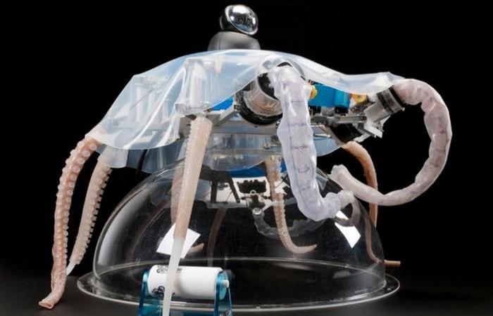 Мягкотелый робот: осьминог.