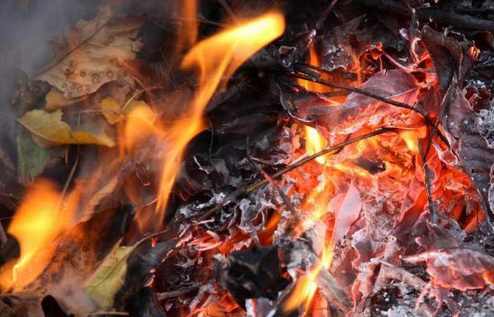 Сжигание