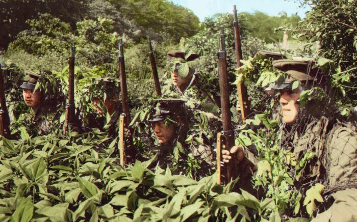 Воевать в джунглях оказалось непросто. |Фото: livejournal.com.