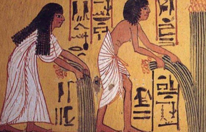 Древний Египет: рацион рядовых египтян.
