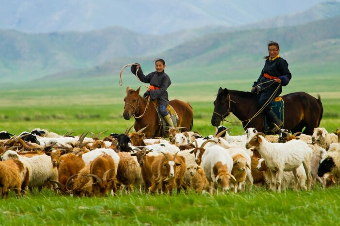 Пастухи живут на нагорьях.  Фото: Twitter.