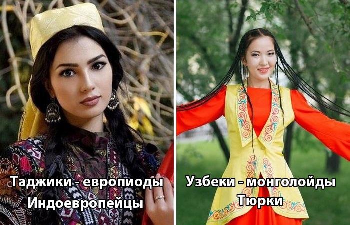 Живут совсем рядом и при этом так отличаются.  Фото: novate.ru.