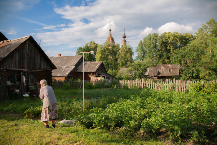 После разрушения колхозов деревни закономерно умирают, уступая место агрохолдингам. |Фото: infourok.ru.