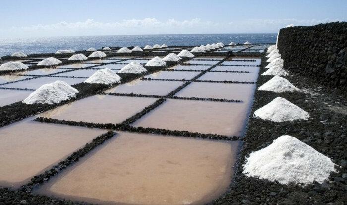 Именно поэтому соль добывают в морях. |Фото: kipmu.ru.