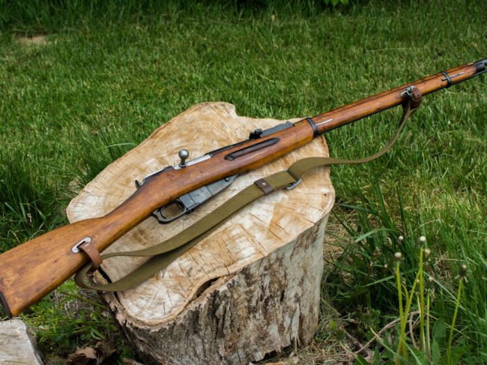 Серьезнейшей оружие. |Фото: w-dog.ru.