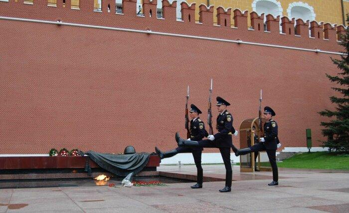 Отнюдь не беззащитны.  Фото: fotokto.ru.