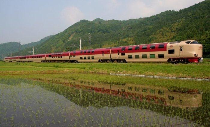 Состоит из двух поездов. |Фото: neoteo.com.