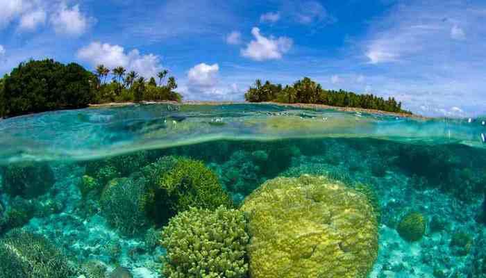Возможно выжить на Маршалловых островах.