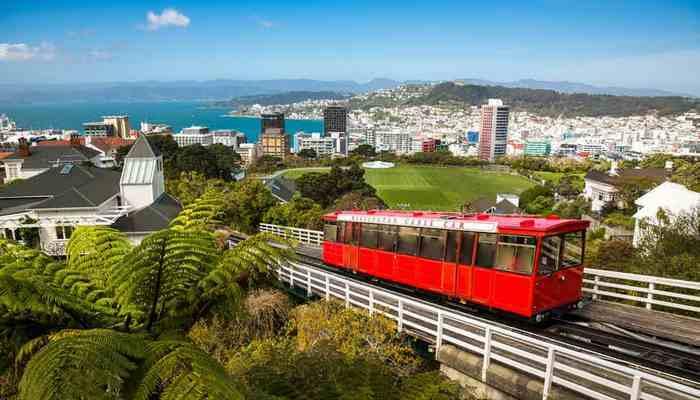 Возможно выжить в Новой Зеландии.
