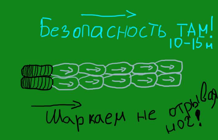 Медленно шаркаем не отрывая ног.  ¦Фото: novate.ru.