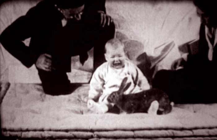 Эксперимент «Маленький Альберт».