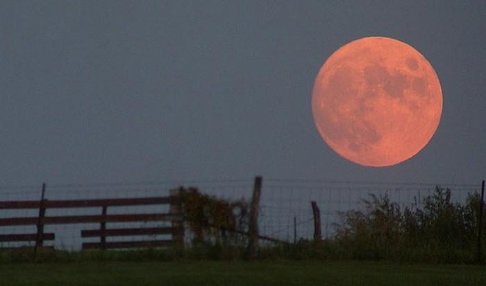 Оптическое явление: иллюзия Луны.