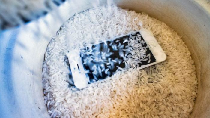 Рис не поможет. |Фото: iphone-remont-ekt.ru.