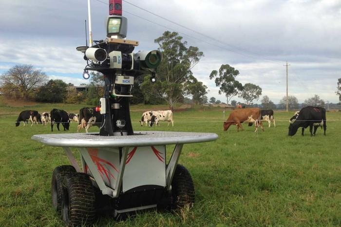 Роботы на ферме.