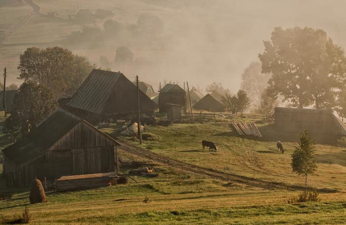 Хутор, село и деревня отличаются плотностью и количеством населения. ¦Фото: photosight.ru.