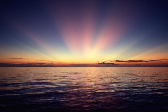 Це цікаво: імітація сходу сонця.