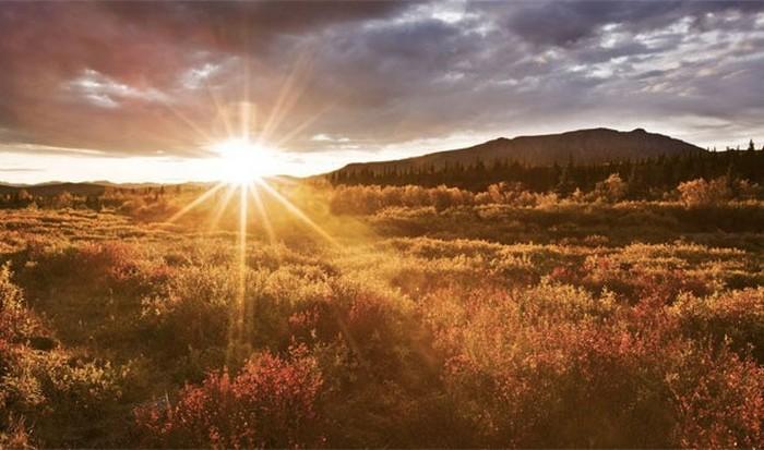 Сонное царство: свет восхода солнца.