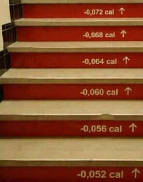 Арт-объект «Лестница сброшенных калорий».