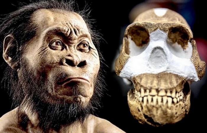 Ученые обнаружили, что может стать причиной шестого массового вымирания.
