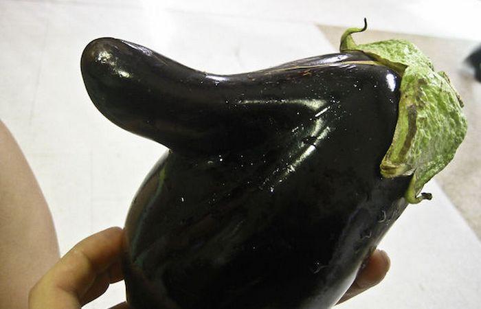 Странная забава: «Конкурс необычных овощей».