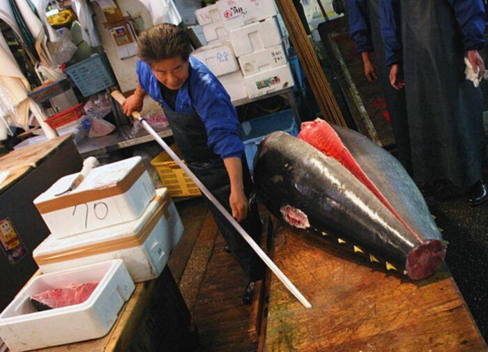 Для разделки огромных рыбьих тушь. |Фото: doodoo.ru.