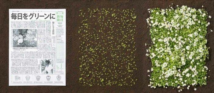 Поместите газету в землю. ¦Фото: cpykami.ru.
