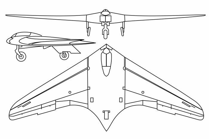 Первый в мире реактивный самолет по схеме летающее крыло. ¦Фото: sputniknews.com.
