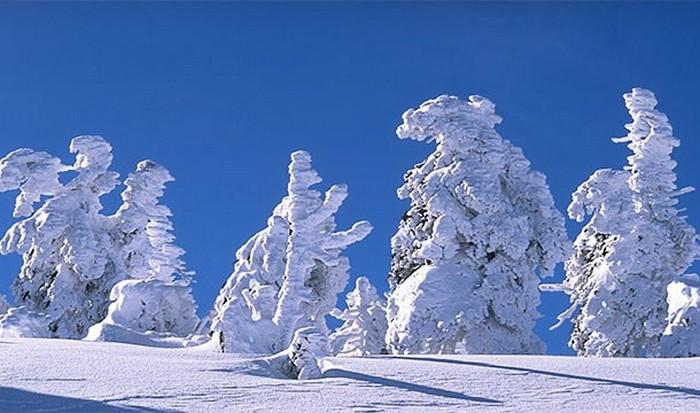 Растопить снег, затем пить воду.