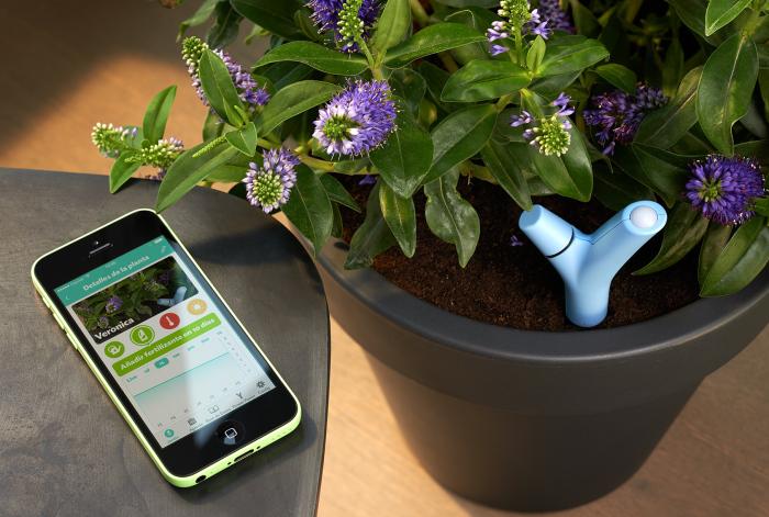 Parrot Flower Power - устройство, которое позаботится о домашних растениях.