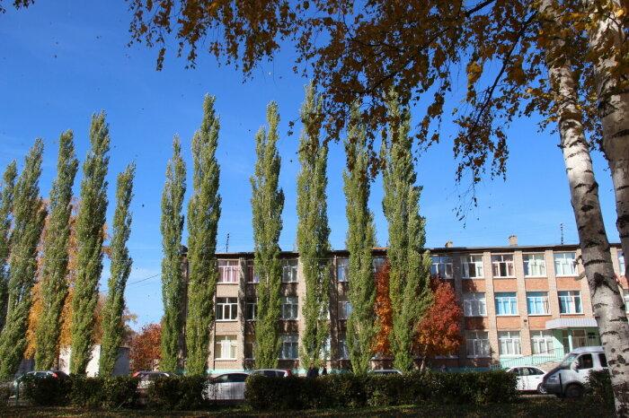 Стал настоящей находкой для городов. ¦Фото: fotokto.ru.