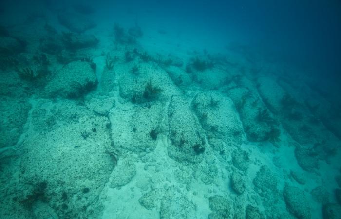 Под водой: дорога Бимини-роуд.