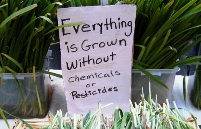 Осторожно, пестициды!